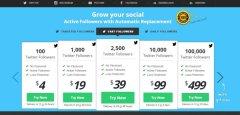 fastfollowerz-screenshot buy followers review